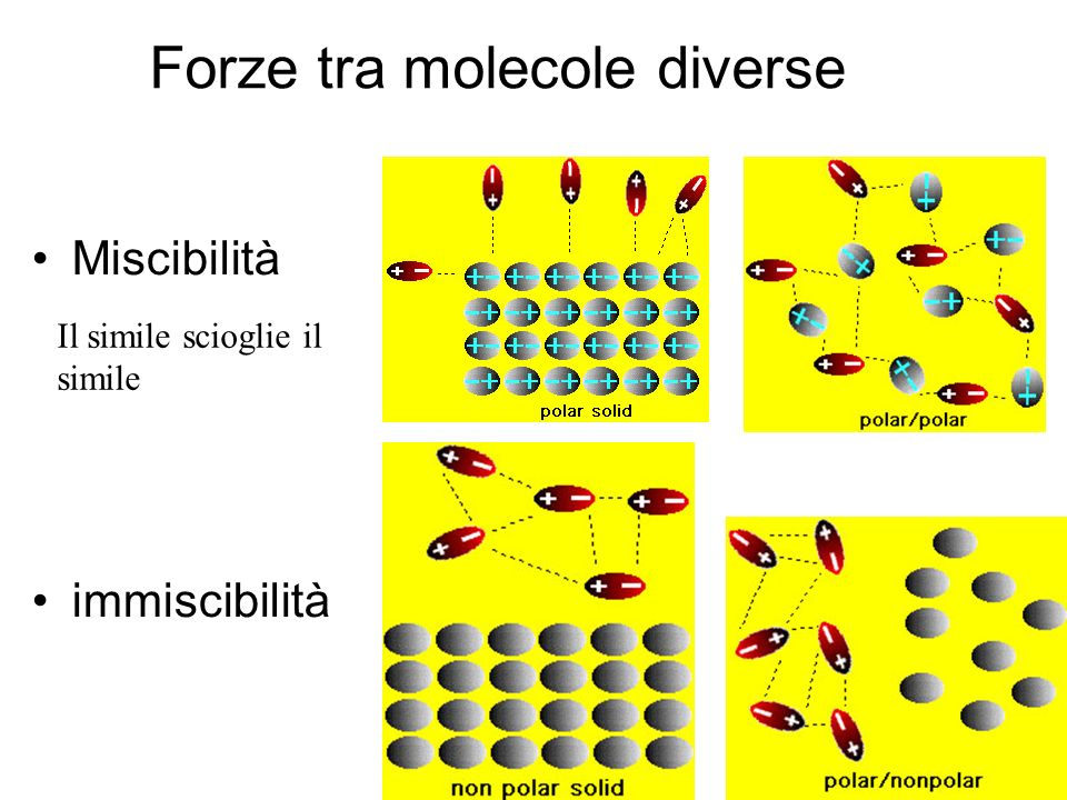 Forze tra molecole diverse