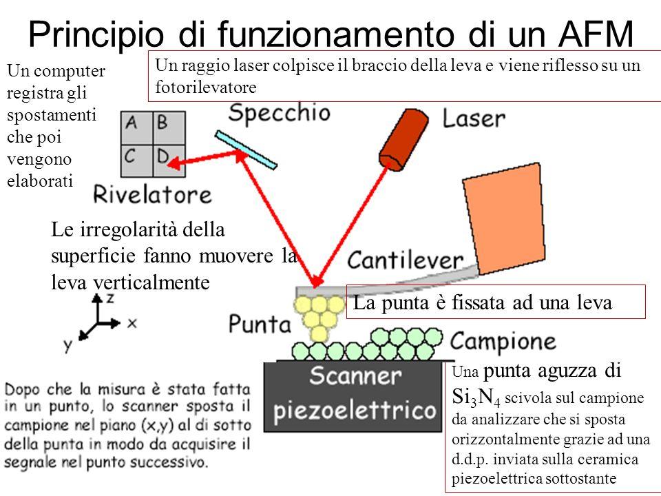 Principio di funzionamento di un AFM