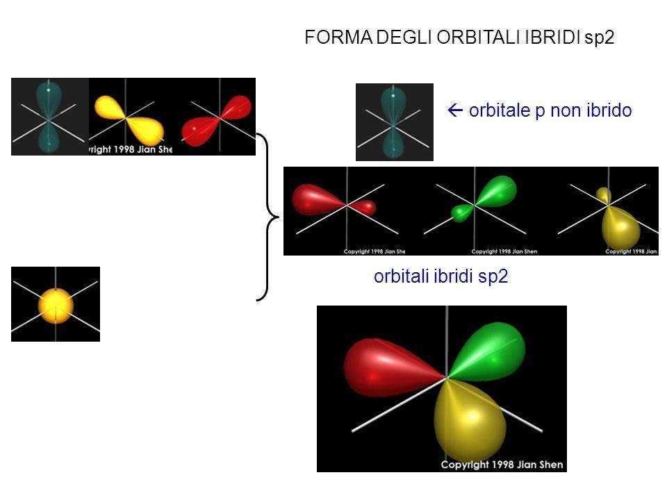 FORMA DEGLI ORBITALI IBRIDI sp2