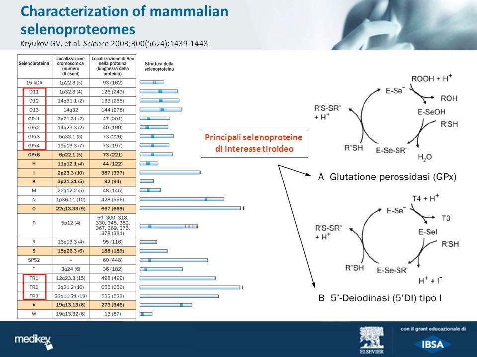 Principali selenoproteine