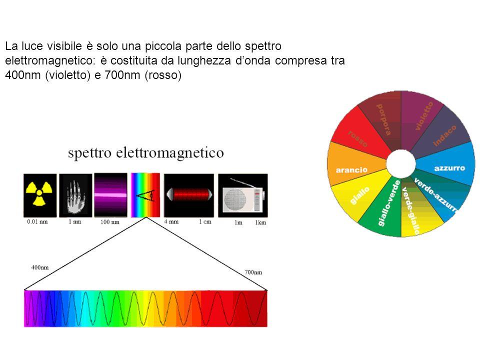 La luce visibile è solo una piccola parte dello spettro