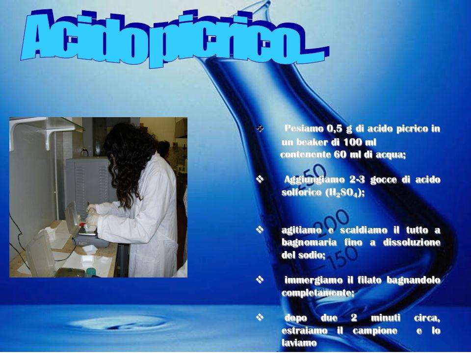 Acido picrico.... Pesiamo 0,5 g di acido picrico in un beaker di 100 ml. contenente 60 ml di acqua;