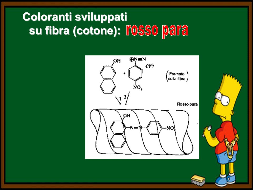 Coloranti sviluppati su fibra (cotone):