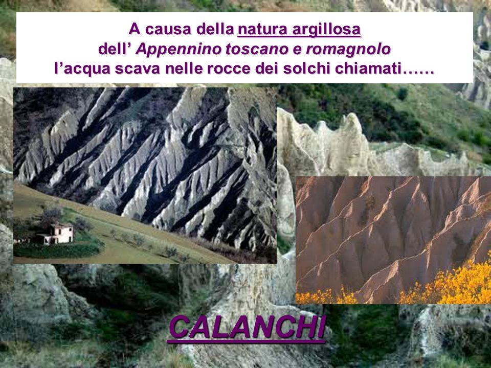 A causa della natura argillosa dell' Appennino toscano e romagnolo l'acqua scava nelle rocce dei solchi chiamati……