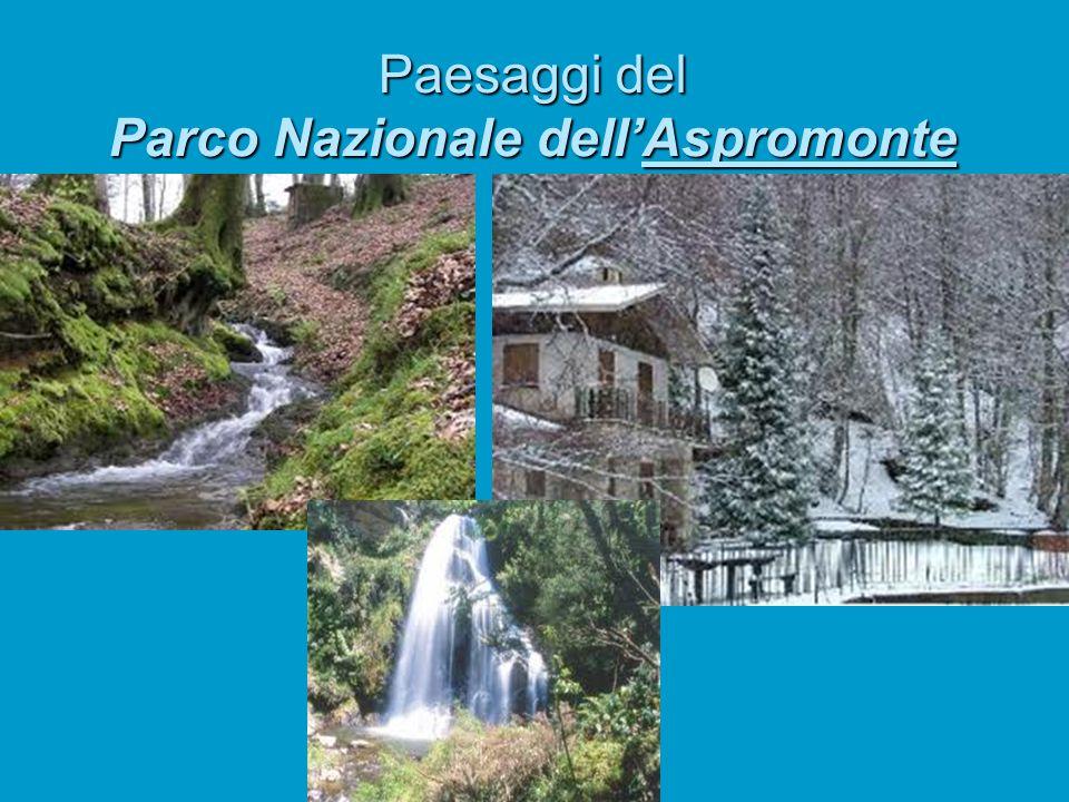 Paesaggi del Parco Nazionale dell'Aspromonte