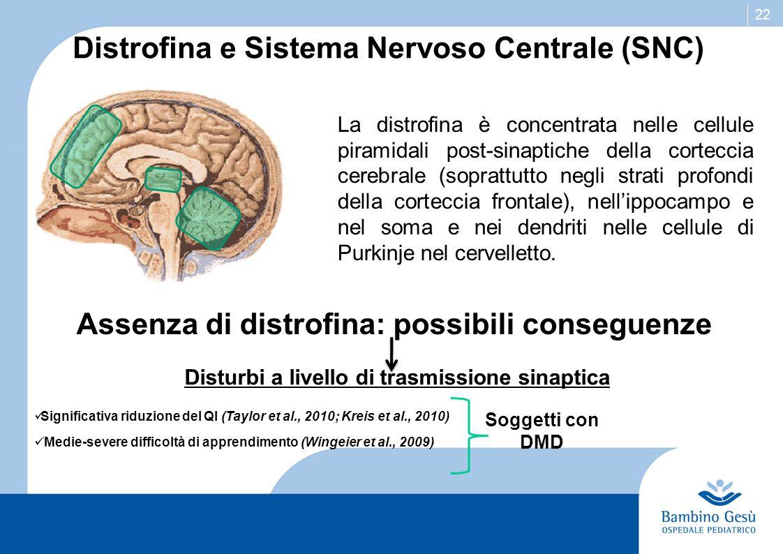 Distrofina e Sistema Nervoso Centrale (SNC)