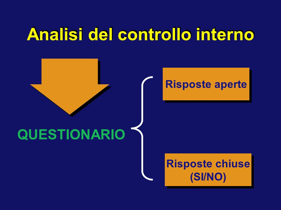 Analisi del controllo interno