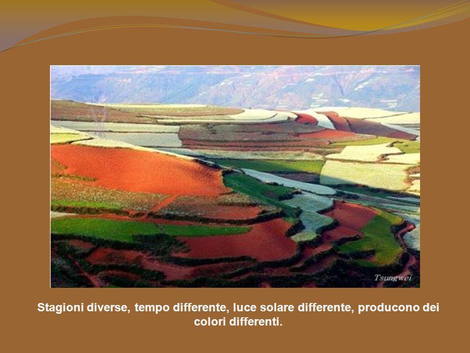 Stagioni diverse, tempo differente, luce solare differente, producono dei colori differenti.