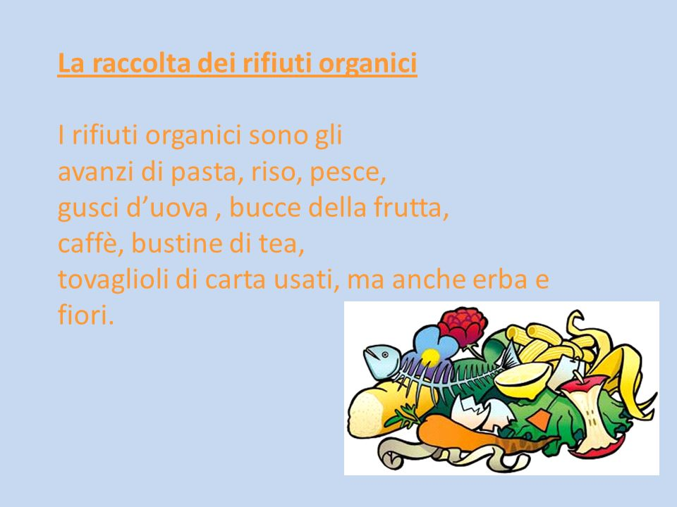 La raccolta dei rifiuti organici I rifiuti organici sono gli