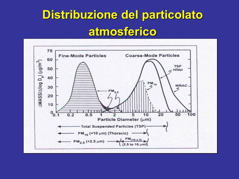 Distribuzione del particolato atmosferico