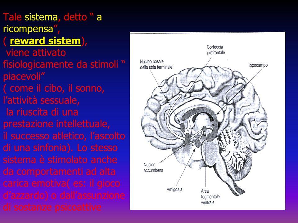Tale sistema, detto a ricompensa , ( reward sistem), viene attivato fisiologicamente da stimoli piacevoli ( come il cibo, il sonno, l'attività sessuale, la riuscita di una prestazione intellettuale, il successo atletico, l'ascolto di una sinfonia).