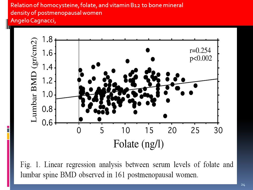 Relation of homocysteine, folate, and vitamin B12 to bone mineral