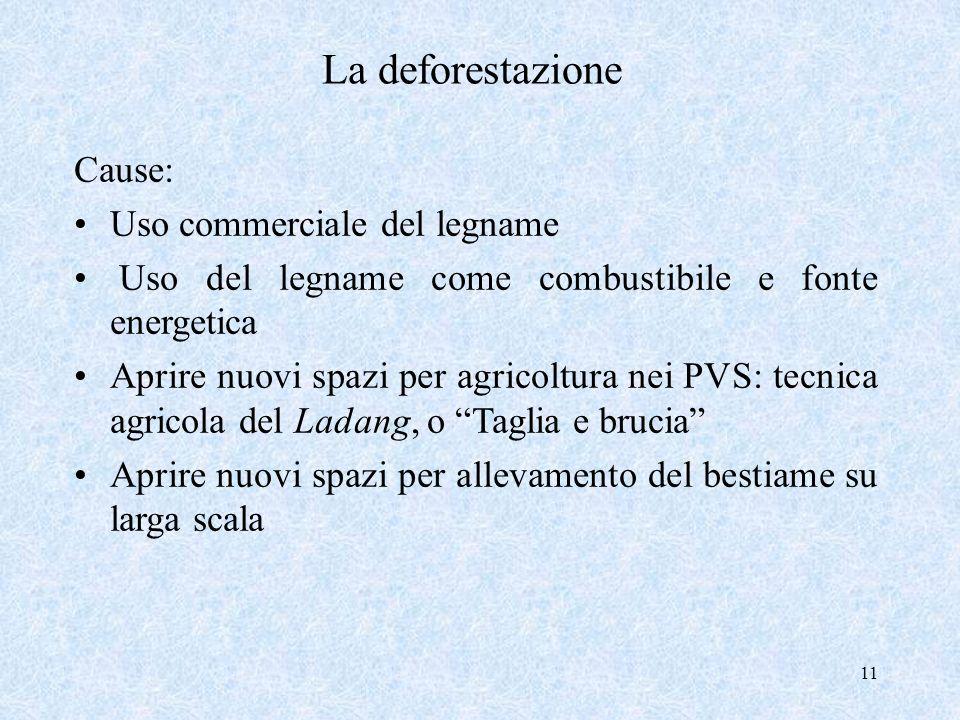 La deforestazione Cause: Uso commerciale del legname