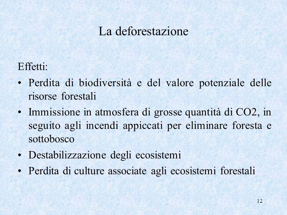 La deforestazione Effetti: