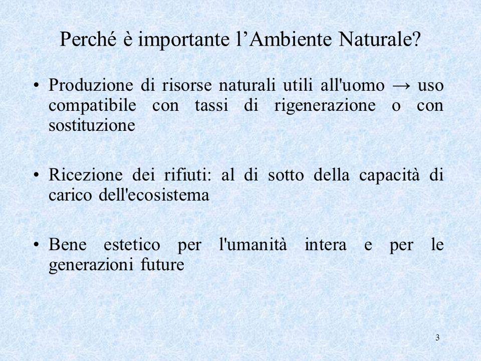 Perché è importante l'Ambiente Naturale