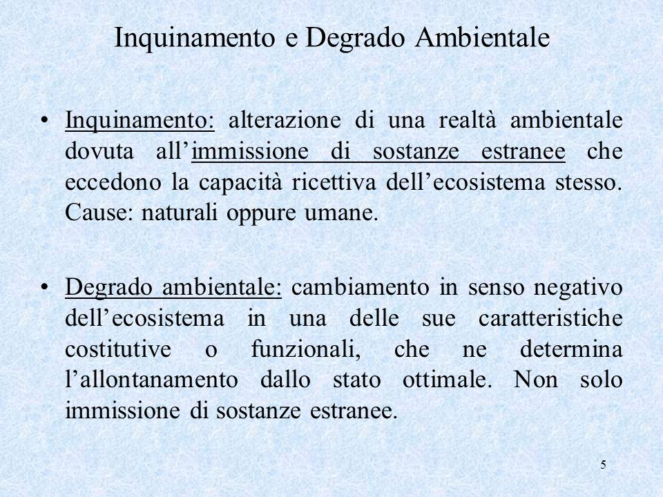 Inquinamento e Degrado Ambientale