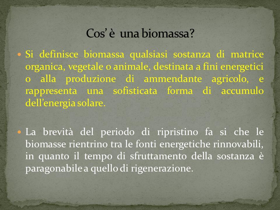 Cos' è una biomassa
