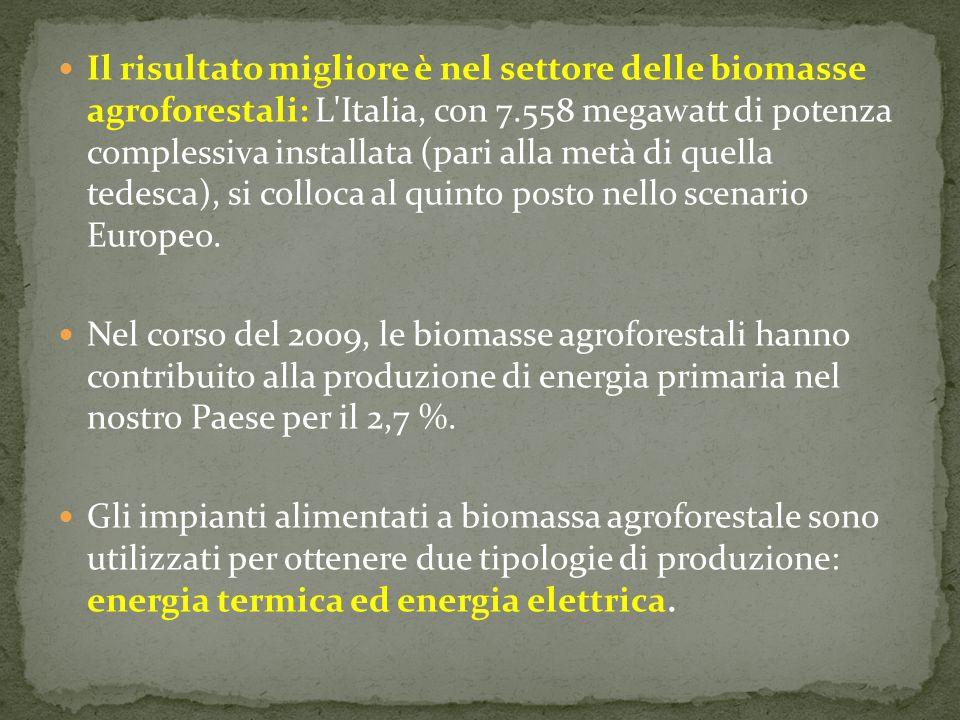 Il risultato migliore è nel settore delle biomasse agroforestali: L Italia, con 7.558 megawatt di potenza complessiva installata (pari alla metà di quella tedesca), si colloca al quinto posto nello scenario Europeo.