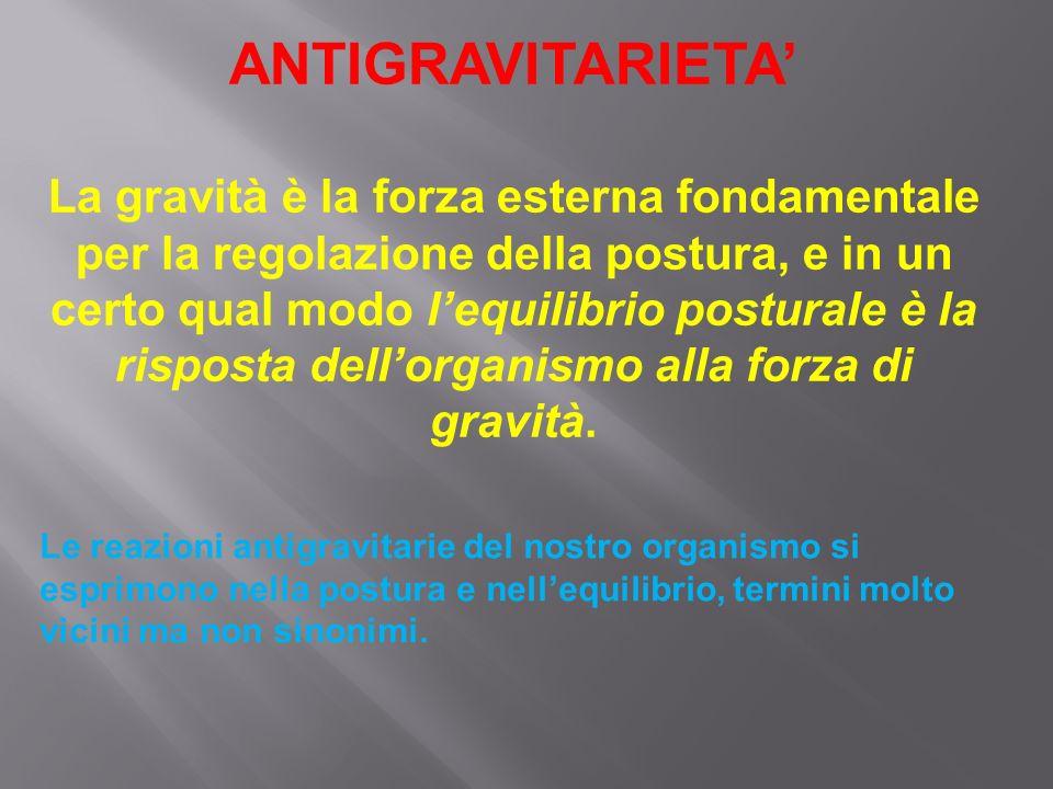 Posturologia ppt scaricare for Equilibrio sinonimi