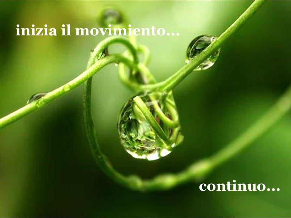 inizia il movimiento... continuo...