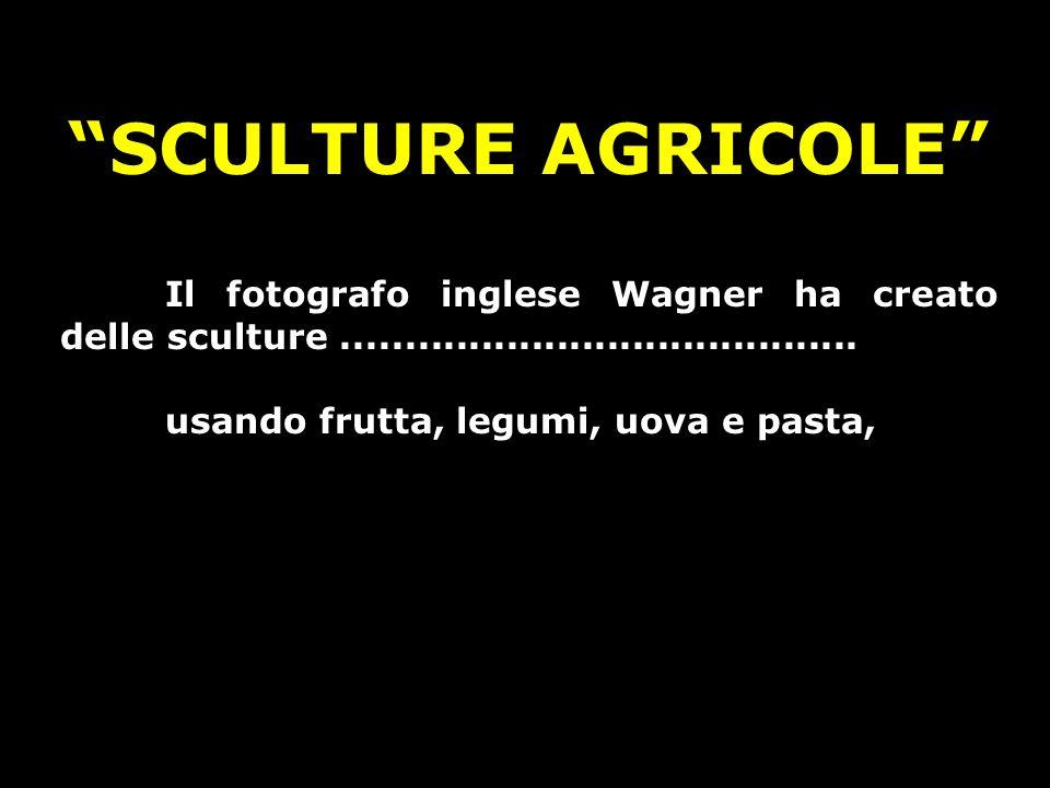 SCULTURE AGRICOLE Il fotografo inglese Wagner ha creato delle sculture .........................................