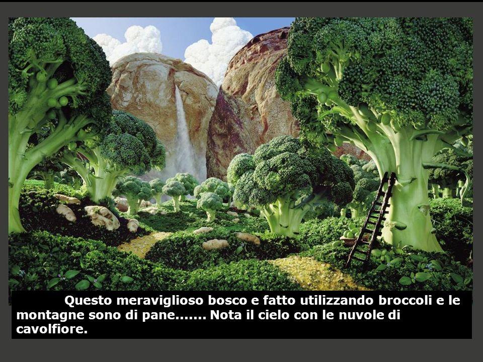 Questo meraviglioso bosco e fatto utilizzando broccoli e le montagne sono di pane.......