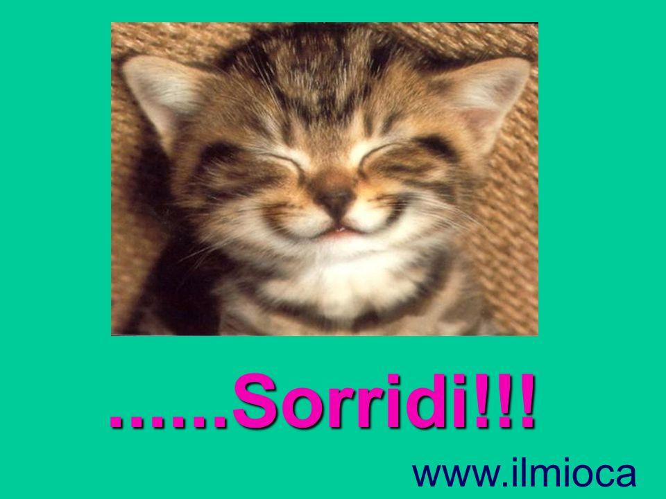 ......Sorridi!!! www.ilmiocantuccio.tk