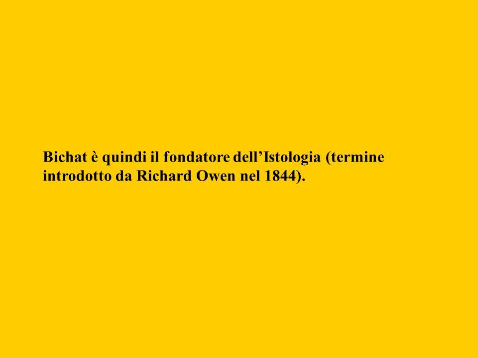 Bichat è quindi il fondatore dell'Istologia (termine introdotto da Richard Owen nel 1844).
