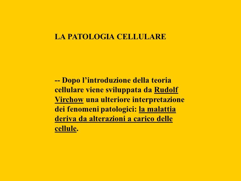 LA PATOLOGIA CELLULARE