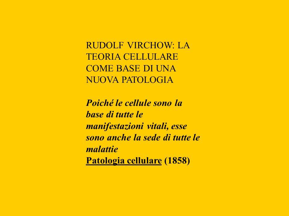 RUDOLF VIRCHOW: LA TEORIA CELLULARE COME BASE DI UNA NUOVA PATOLOGIA