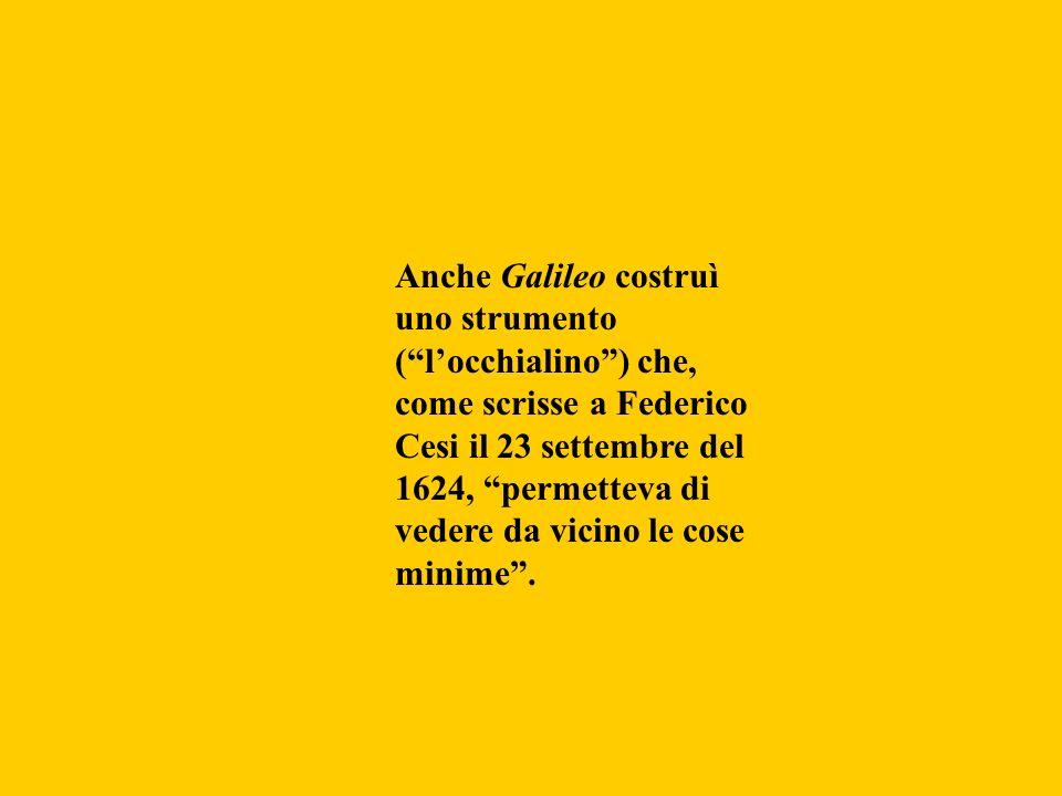 Anche Galileo costruì uno strumento ( l'occhialino ) che, come scrisse a Federico Cesi il 23 settembre del 1624, permetteva di vedere da vicino le cose minime .