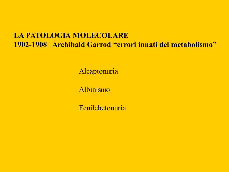 LA PATOLOGIA MOLECOLARE