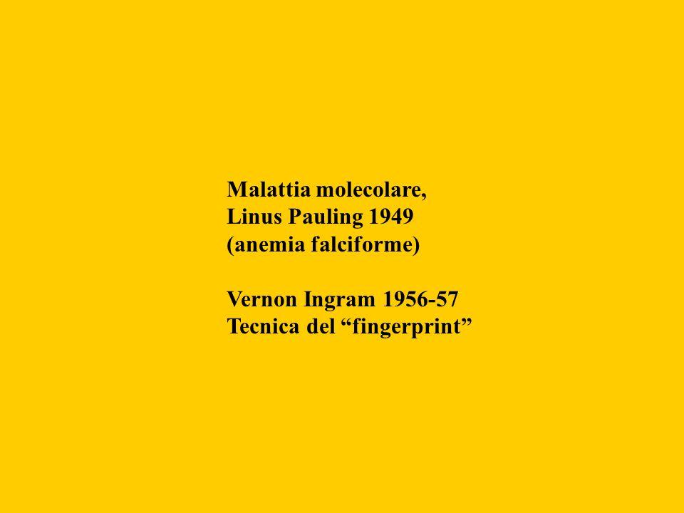 Malattia molecolare, Linus Pauling 1949 (anemia falciforme)