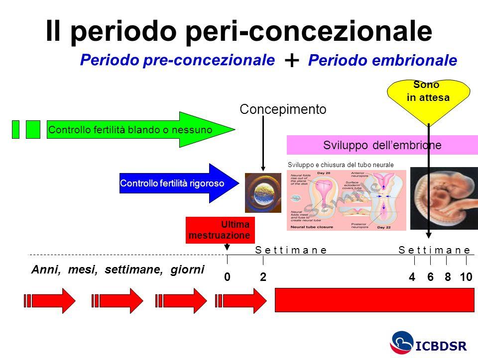 Il periodo peri-concezionale Anni, mesi, settimane, giorni