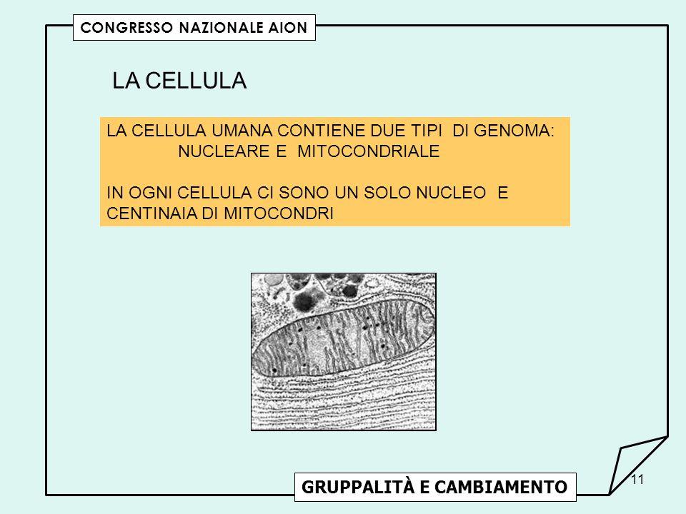 LA CELLULA LA CELLULA UMANA CONTIENE DUE TIPI DI GENOMA: