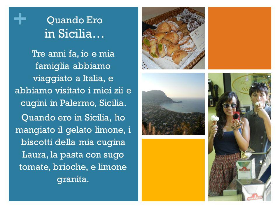 Quando Ero in Sicilia… Tre anni fa, io e mia famiglia abbiamo viaggiato a Italia, e abbiamo visitato i miei zii e cugini in Palermo, Sicilia.
