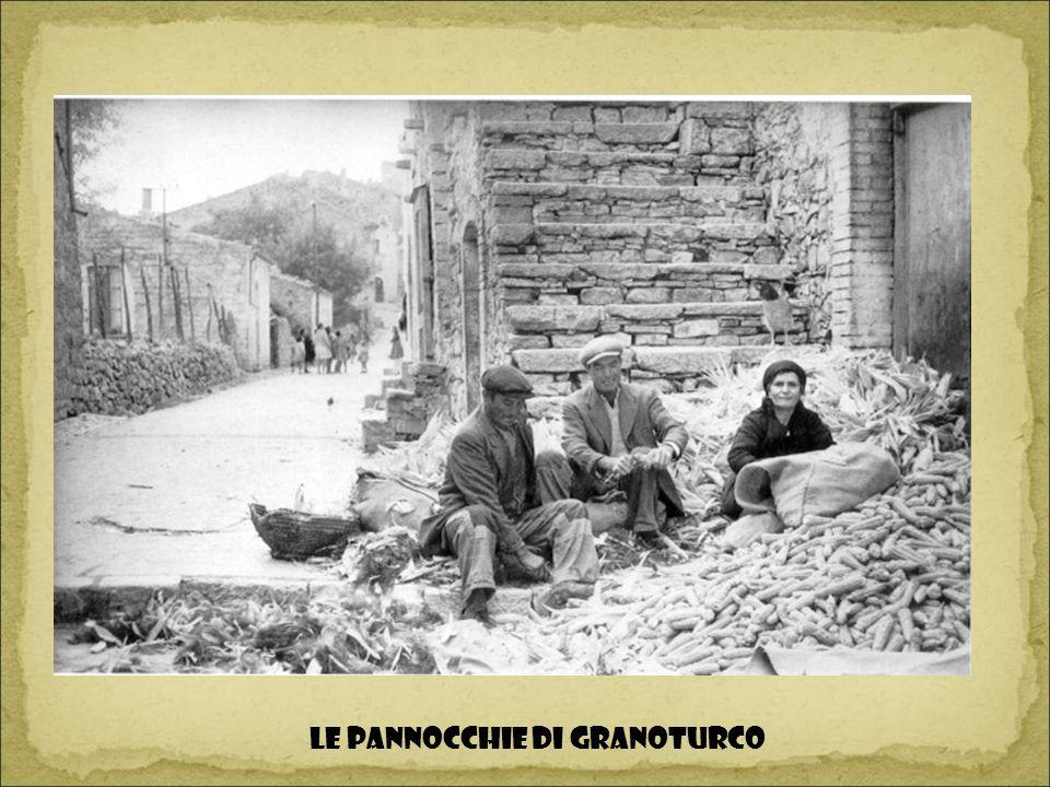 LE PANNOCCHIE DI GRANOTURCO