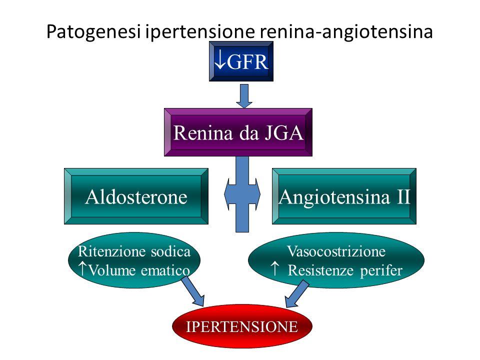 Patogenesi ipertensione renina-angiotensina