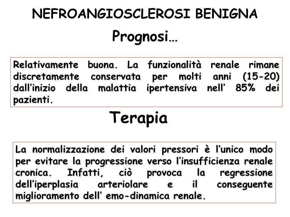 NEFROANGIOSCLEROSI BENIGNA