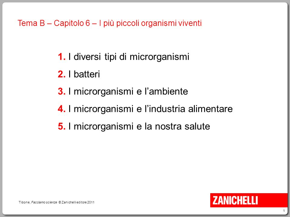 1 i diversi tipi di microrganismi 2 i batteri 3 ppt video online scaricare - I diversi tipi di droga ...