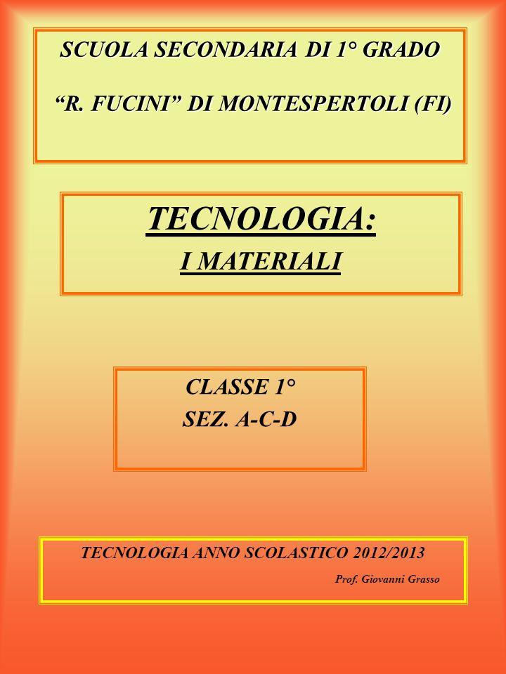 SCUOLA SECONDARIA DI 1° GRADO R. FUCINI DI MONTESPERTOLI (FI)
