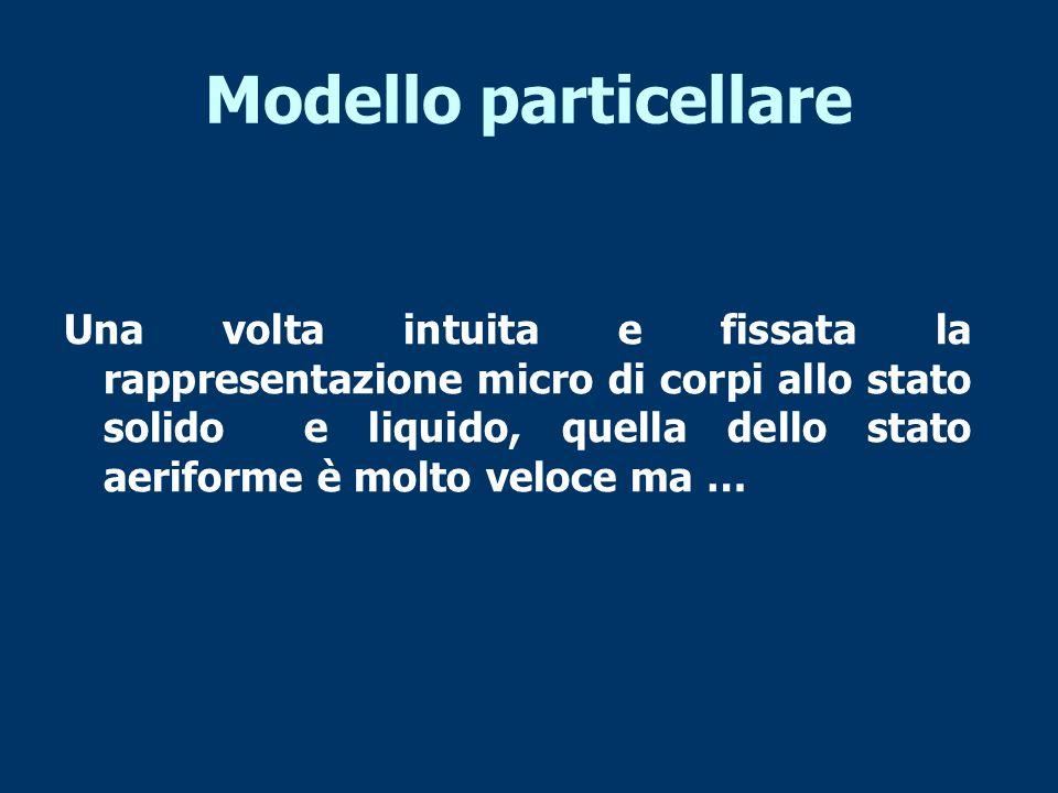 Modello particellare