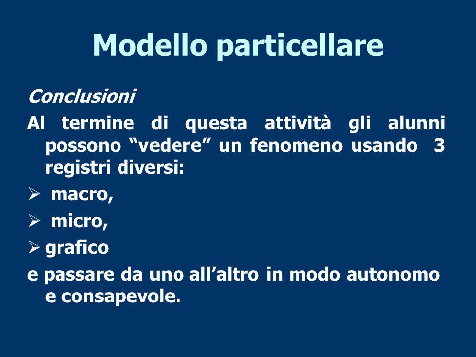 Modello particellare Conclusioni