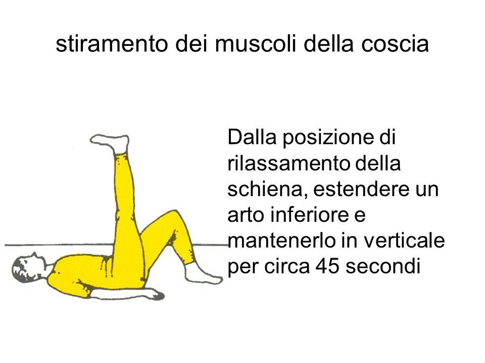 stiramento dei muscoli della coscia
