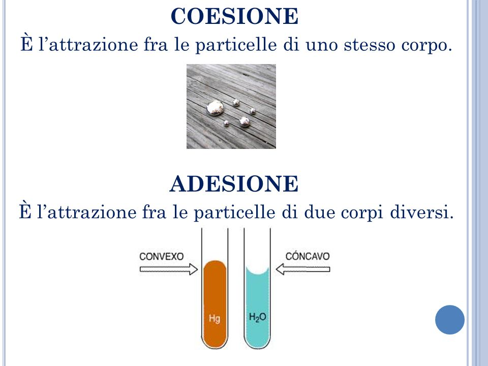 COESIONE È l'attrazione fra le particelle di uno stesso corpo.