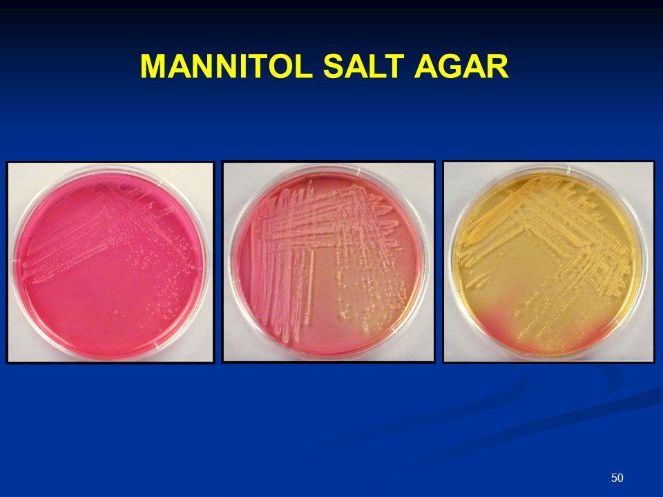 Pathogenic Escherichia coli  Wikipedia