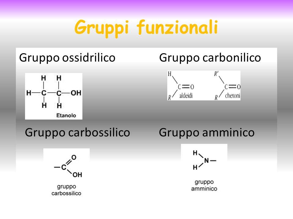 Gruppi funzionali Gruppo ossidrilico Gruppo carbonilico Gruppo carbossilico Gruppo amminico
