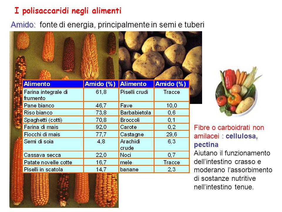 Favorito Zuccheri (CH2O)n Carboidrati - ppt scaricare EE15