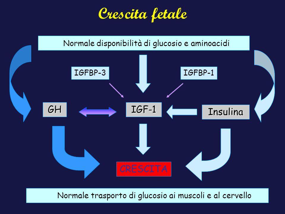 Crescita fetale Normale disponibilità di glucosio e aminoacidi GH