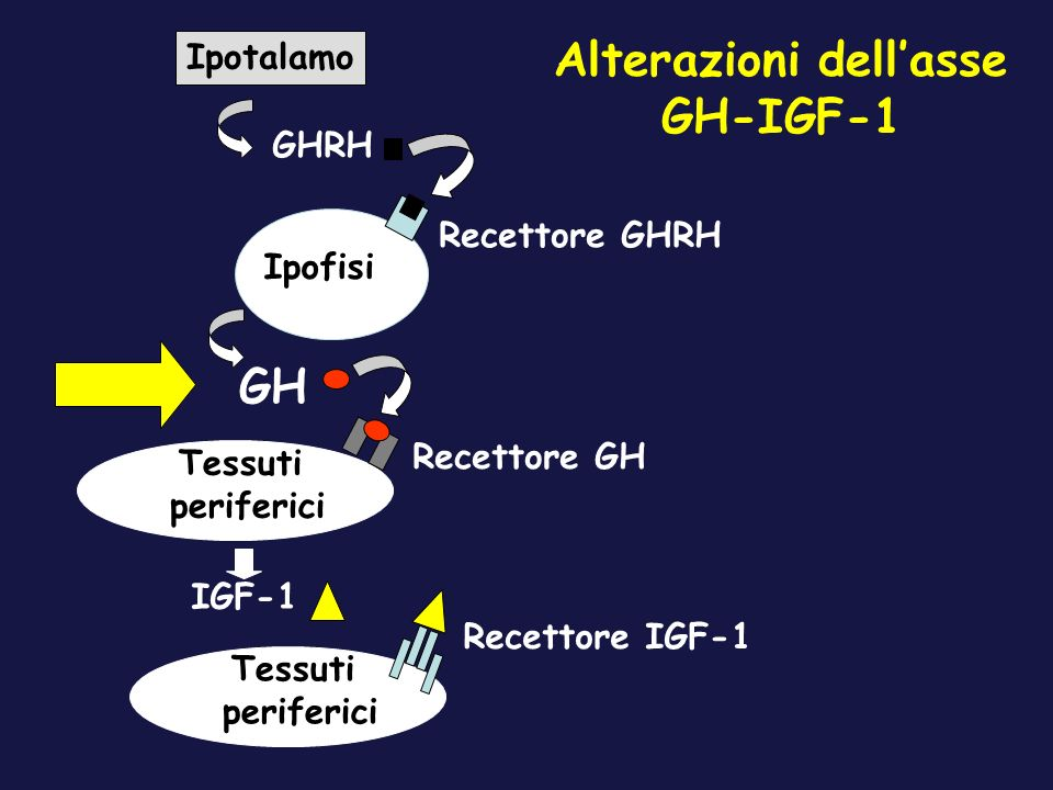 Alterazioni dell'asse GH-IGF-1